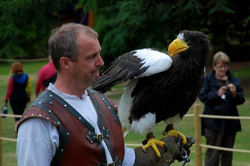 Comparação do tamanho de águias  com relação ao homem. 6595515091_e7519438a9
