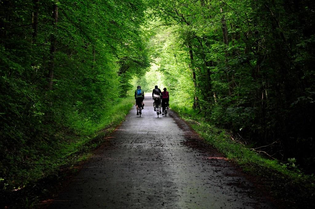 Balade de l'Arbre de mai : Eifel et Moselle [2012] saison 7 •Bƒ   - Page 3 7247757362_d1aa363c61_b
