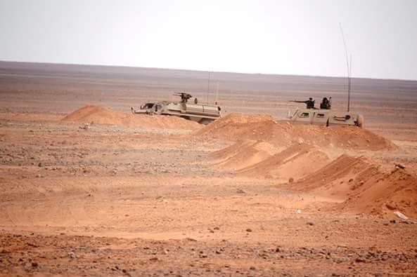 الصناعة العسكرية الجزائرية ... مدرعات ( فوكس 2 ) - صفحة 5 27305767674_ee8cf306d5_b