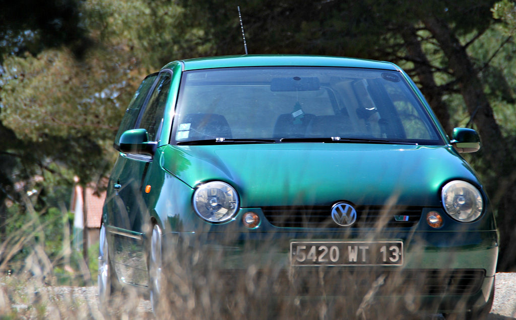 Lupo by MontanaGreen - Page 14 6999307854_e5663fc1c8_b