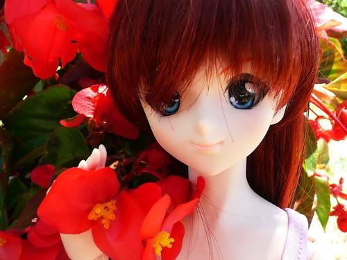 [Dollfie Dream Asuka] Après la pluie.. (màj 02/02) 7454489390_c2ac612d41