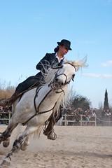 Courses, abrivados, encierros, roussatailles... site fotos 6904883821_913a83078d_m
