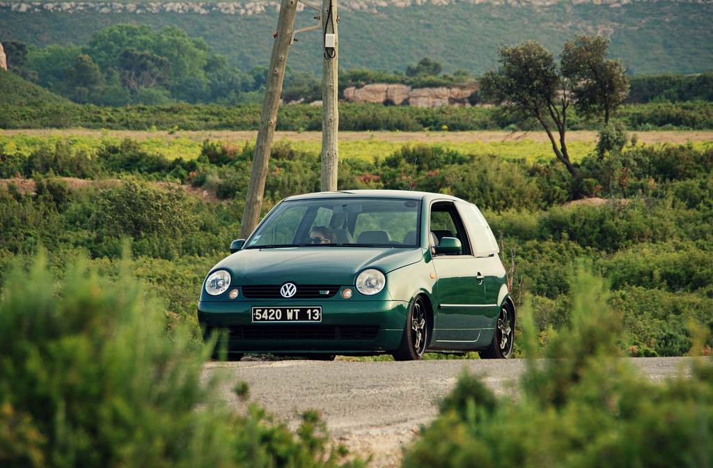 Lupo by MontanaGreen 7310262030_dce98c30cf_b
