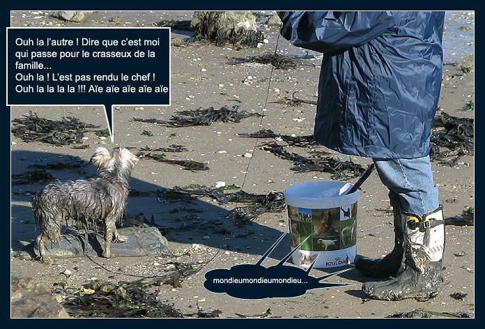 La pêche aux palourdes (bédé photo-roman) 8158704424_42288a8ab8_b