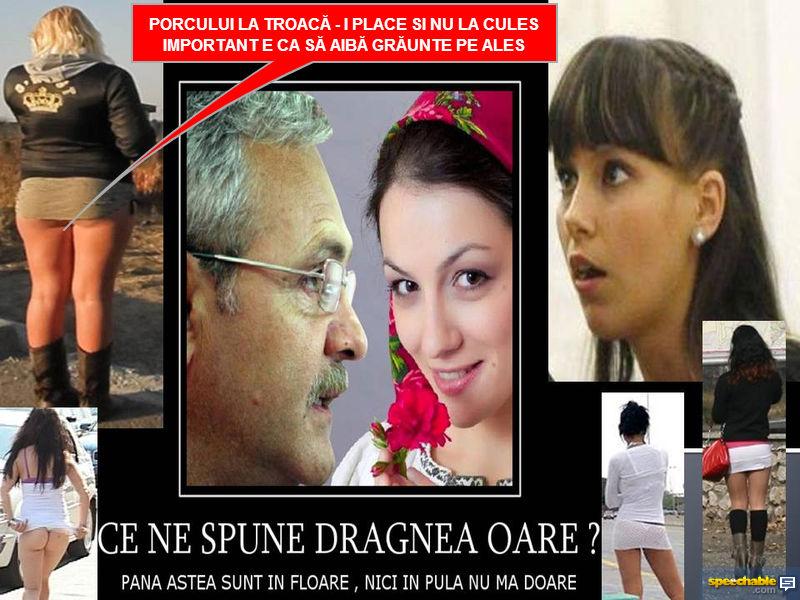 """DRAGNEA , """"vocea """" și talentul  , BOUL , vaca TARE-NTATĂ și chiloții ÎN ȚARA LUI NEAM PROSTIA 10676179383_9e73aa2d63_o"""