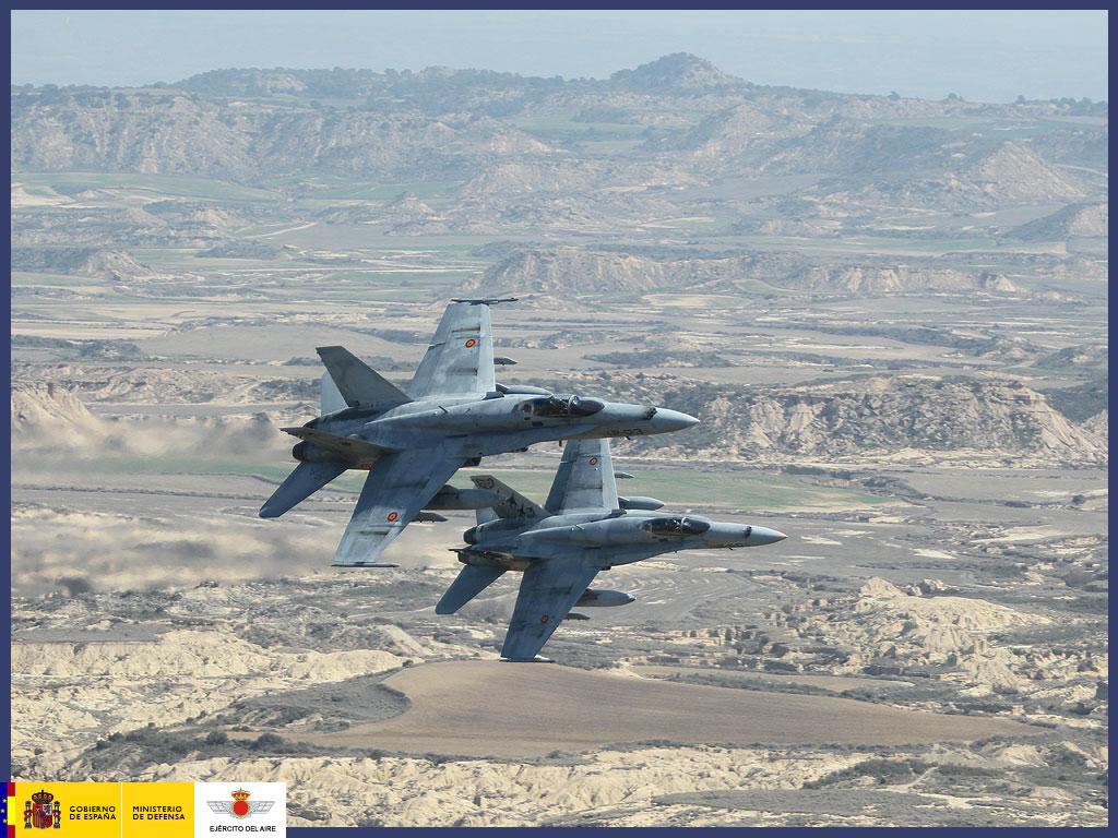 Armée Espagnole/Fuerzas Armadas Españolas - Page 30 13147166423_4a5116cf3e_b