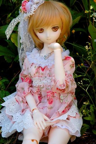 [Dollfie Dream Asuka] Après la pluie.. (màj 02/02) - Page 3 9355902229_9525a181a5