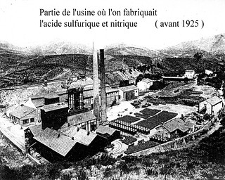 Paulilles 1955