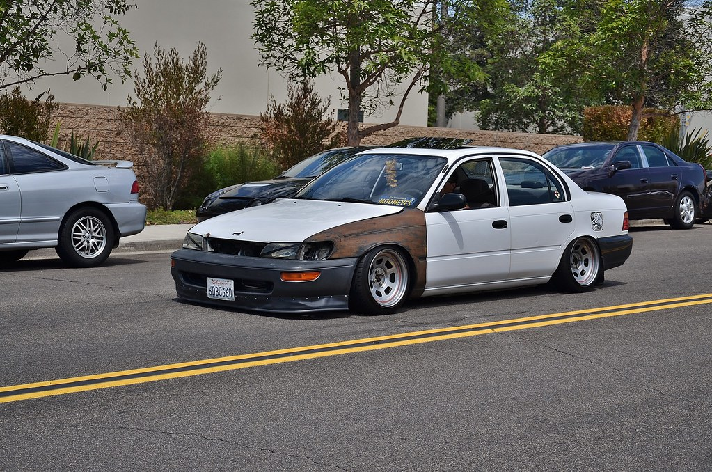 Project Rat Rolla! - Page 6 9542554441_dccbc1f069_b