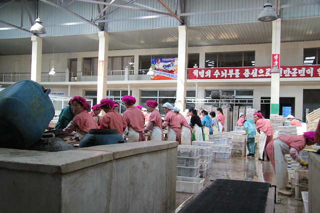 I have returned from the DPRK 9193419807_c18056fd56_z