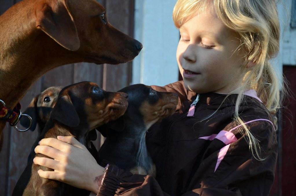 En liten familieforøkelse :) OPPDATERT s.3 med litt nye bilder! :D 8088114643_33ab87982e_b