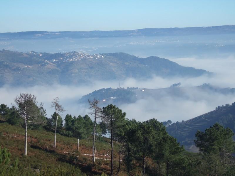 Vila Real > Fontes > Vila Real 8354723488_dbc69260f4_c
