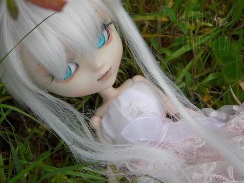 Koizumi's Dollies ; Le retour. 8711237812_8ab86bffea