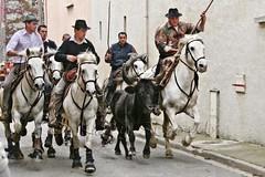 Courses, abrivados, encierros, roussatailles... site fotos 8138059972_cf9943c381_m