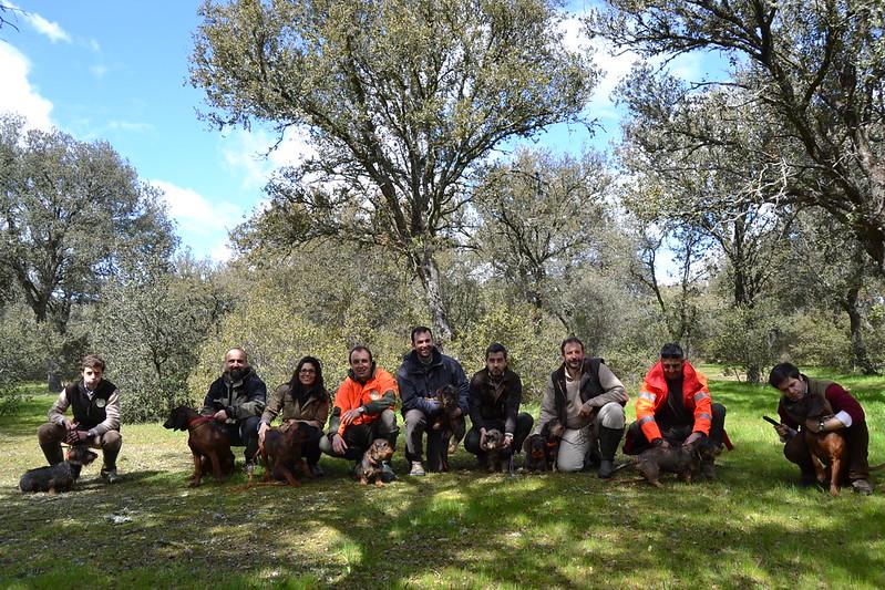 Reunión o rastros por Madrid - Página 3 8589927272_4fe653af52_c