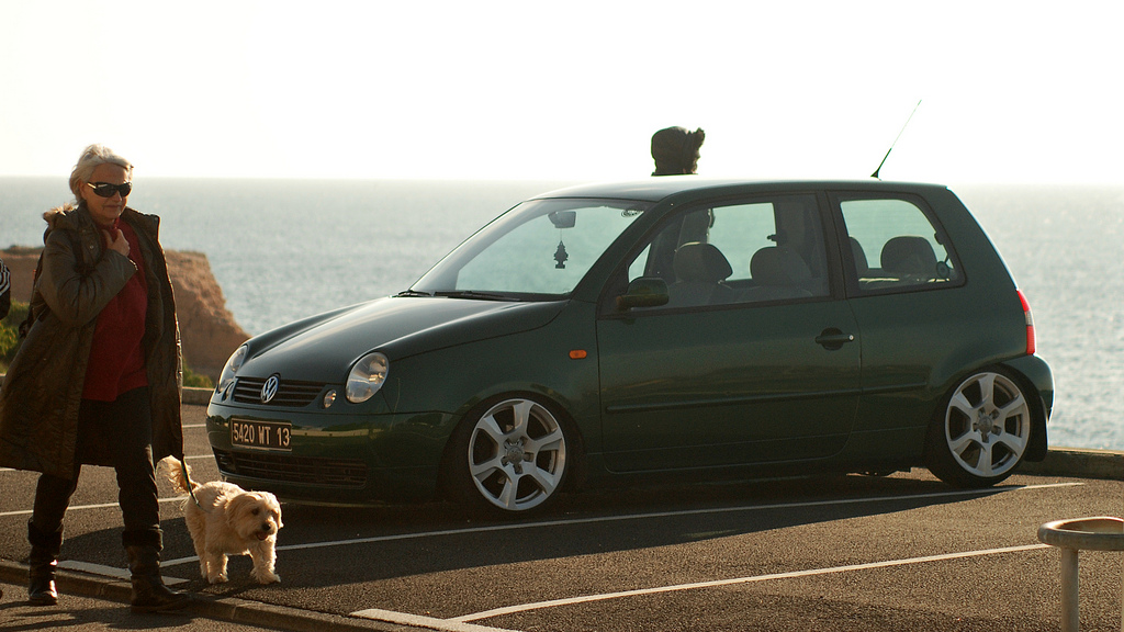 Lupo by MontanaGreen 8417642392_c9034ff1d3_b