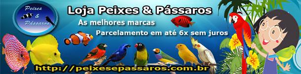 CORAÇÃO DE MÃE: MANON AMA SECA 8488676551_d2560d0f49_z