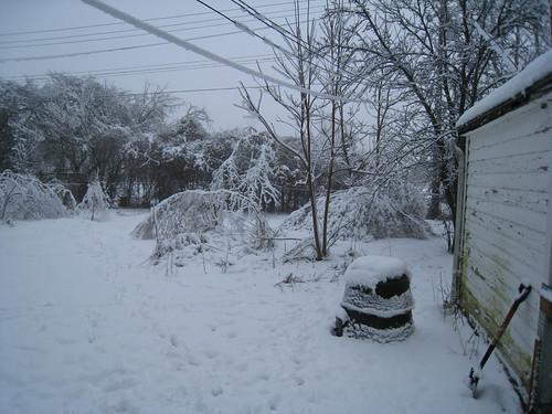 Snowstorm Pics and video 8512071993_2a11d13557