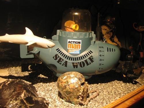 The Adventures of Slacques Cousteau and the Slacademy Treasure!! 8511632234_91723e2e4f