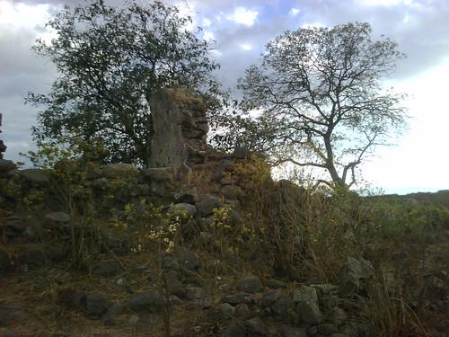 Invitación a prospectar en una hacienda en el Estado de México - Página 6 8615682296_525f9bac6a