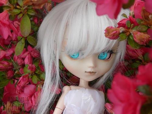 Koizumi's Dollies ; Le retour. 8710110941_1f1dc94865