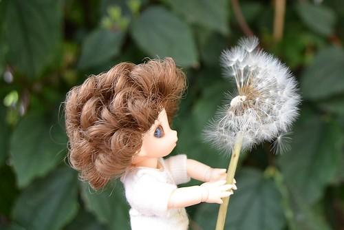 Mes dolls (Soom, Iple, Artist, FL, Lati...) news Merrow - Page 14 7661504272_04279509a5