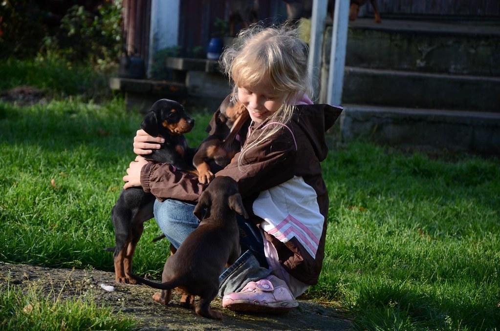 En liten familieforøkelse :) OPPDATERT s.3 med litt nye bilder! :D 8088115124_83ec6dd16c_b