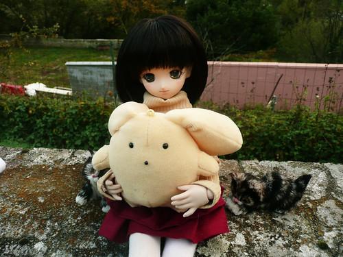 [Dollfie Dream Asuka] Après la pluie.. (màj 02/02) 8115431451_0404e901a2