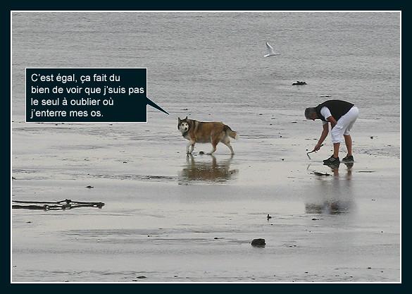 La pêche aux palourdes (bédé photo-roman) 8209439458_c37a950ff2_z