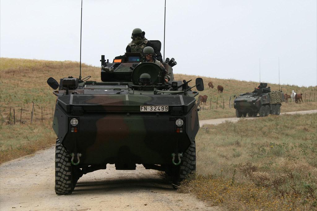 Armée Espagnole/Fuerzas Armadas Españolas - Page 23 8345536022_a335f9aaf0_b