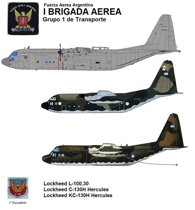 El colapso de las Fuerzas Armadas Argentinas - Página 5 8253405801_697edaf334_c