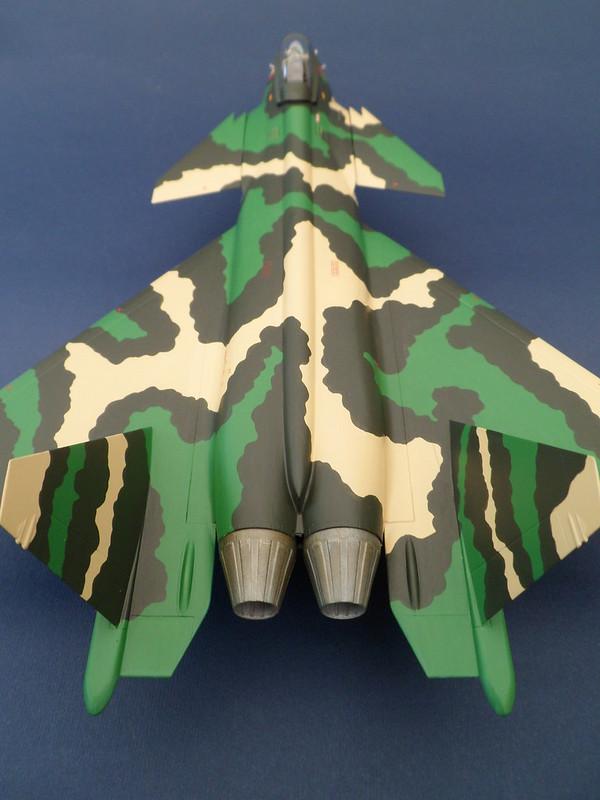 Pas-à-pas : MiG 25 Foxbat [Condor 1/72] - Page 3 7810637400_ae87e7fdd4_c
