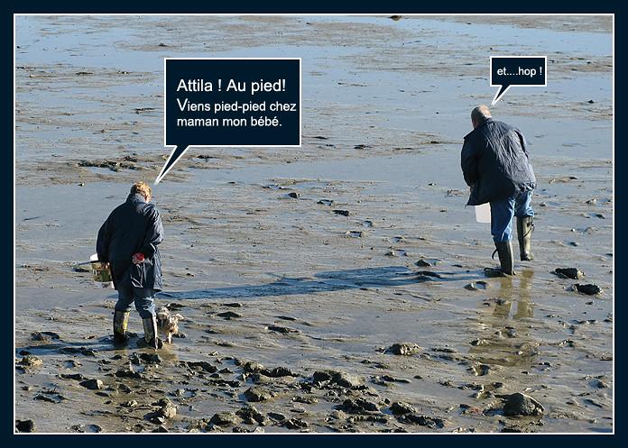 La pêche aux palourdes (bédé photo-roman) 8158674479_62c7ba045d_b