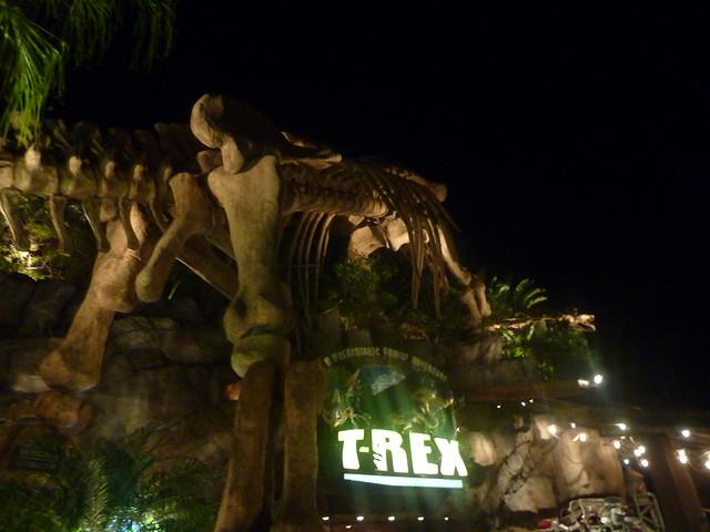Walt Disney World - Le rêve dans la main.... - Page 3 8492260154_1e6727b91d_z