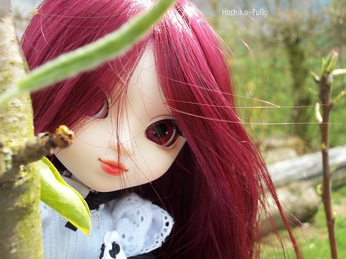 Misao Netsuki 8686175606_b206a3880d