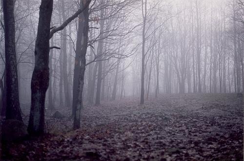 03.11.1253. Обрывая нити. Favim.com-18429
