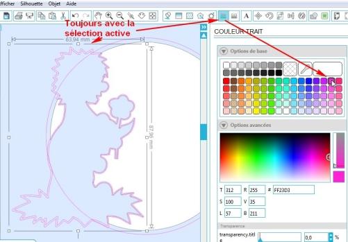 Comment incruster une image (silhouette) dans une carte EpaisseurTrait-TraitRose