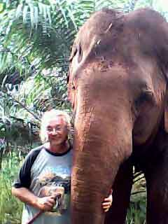 Eléphants - The Last Mahout Annonce