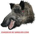 Chasseur de sanglier.com