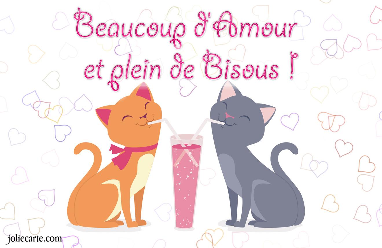 Vendredi 19 septembre Amour-bisous-chat