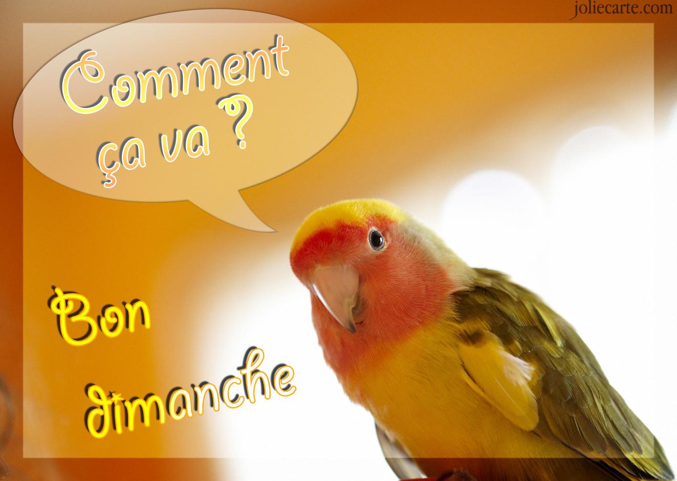Dimanche 25 février  Dimanche-comment-ca-va