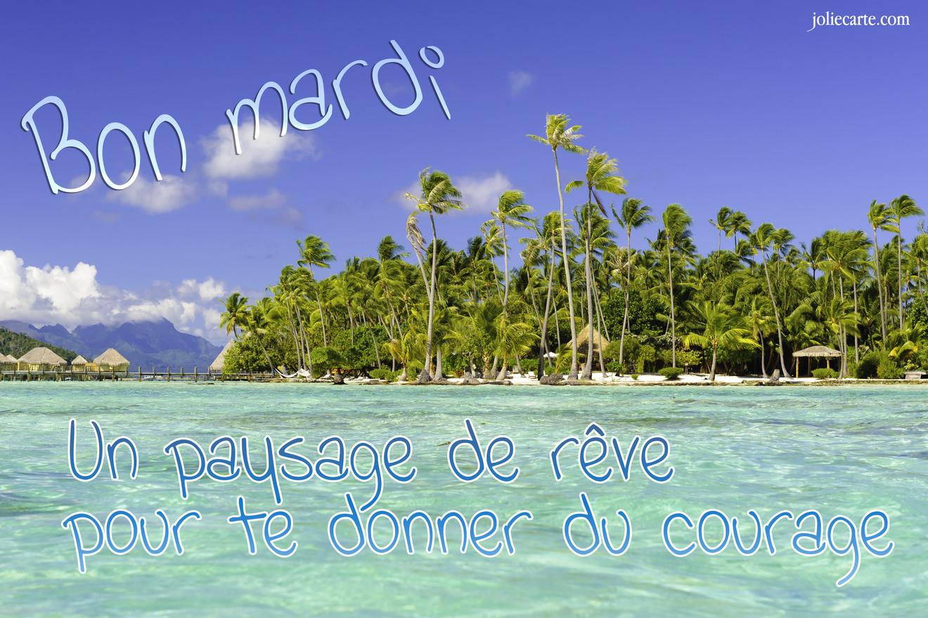 Mardi 12 avril Reve-bon-mardi