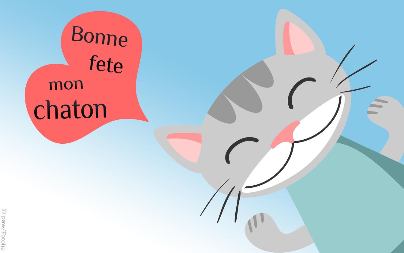 héé!!! c'est le 18 mai, bon anniversaire clochette ... Bonne-fete-chaton