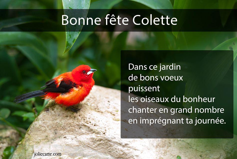 Ajonc Colette