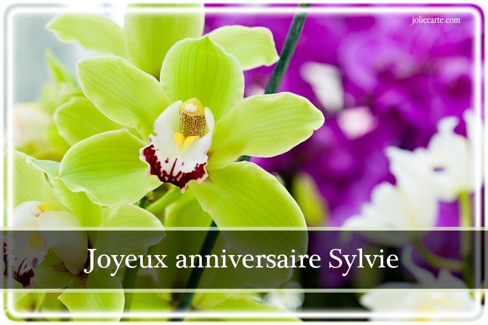 Anniversaire Jambi Ginto (Sylvie) Sylvie