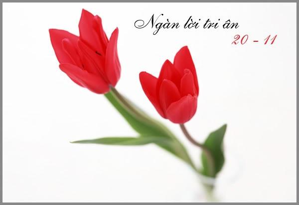 KÍNH CHÚC THẦY Thiep-20-11-7