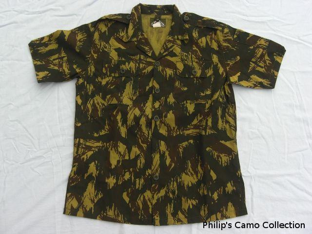 Ugandan lizard  Collection_384