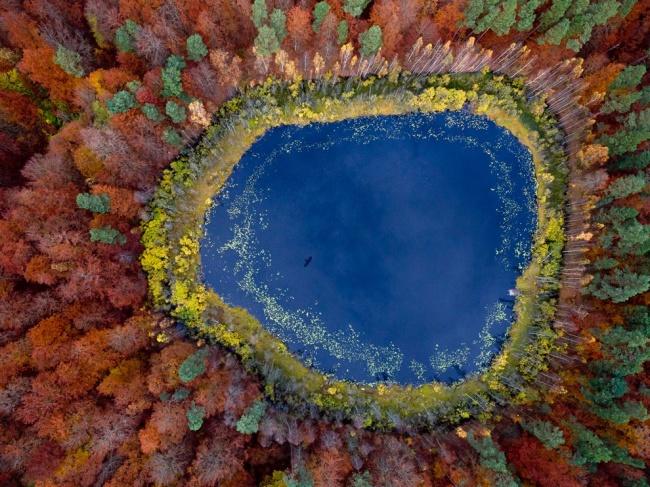 23 фотографии, в которые трудно поверить 7568260-R3L8T8D-650-autumn-lake-eastern-pomerania-poland_63604_990x742