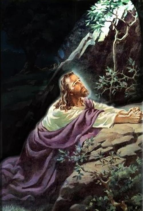 سلسلة حياة المسيح في صور 965103231