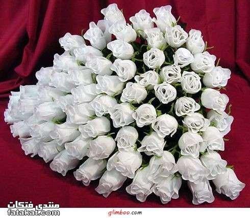 أهدي وردة لمين مابدك  - صفحة 16 1277767680